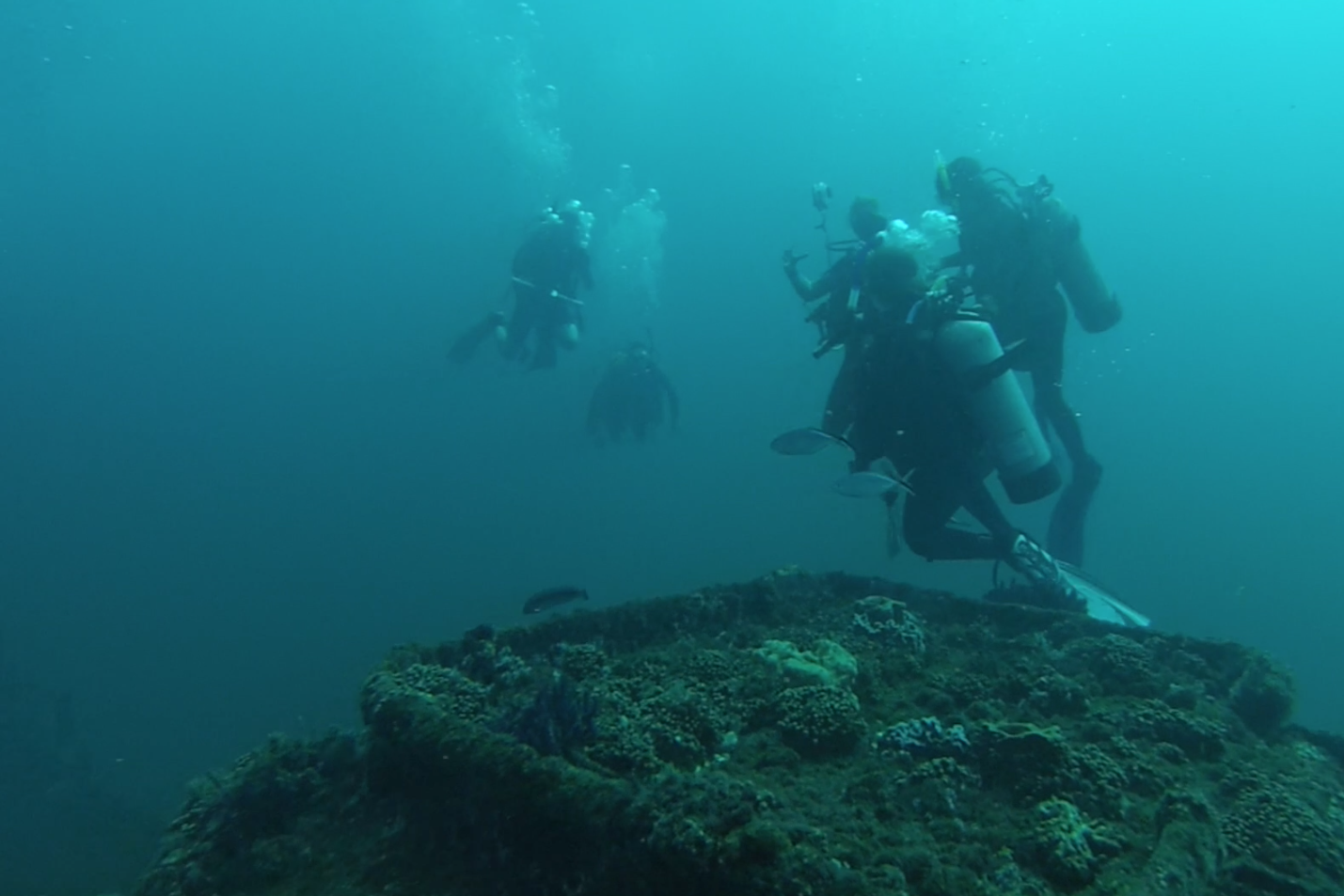 A scuba diving and photography camp in one captured Emma Rooker's '18 interest this summer in North Carolina.