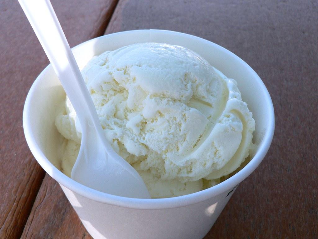 Vanilla Ice Cream at Curly's Frozen Custard