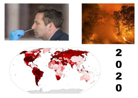 Summary of 2020.